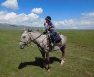 07 boy horse