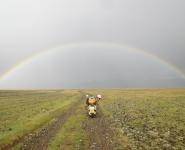 16 rainbow